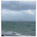 Skyway en un día tempestuoso servilleta