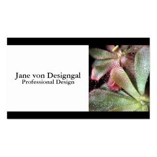 Slackii Sundew Plant Photo Business Card