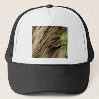 slant shadow stone trucker hat