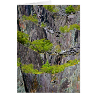 Slate cliff with trees greeting cards