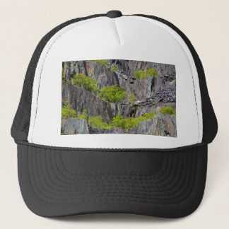 Slate cliff with trees trucker hat