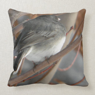 Slate-Colored Canadian RockyMountains Bird Pillow