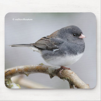 Slate-Colored Dark-Eyed Junco on the Pear Tree Mouse Pad