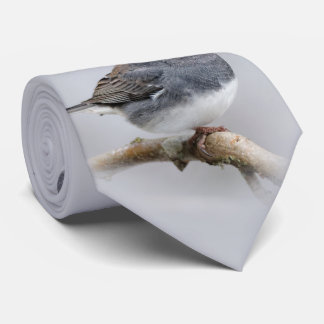 Slate-Colored Dark-Eyed Junco on the Pear Tree Tie