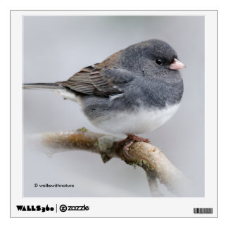 Slate-Colored Dark-Eyed Junco on the Pear Tree Wall Decal