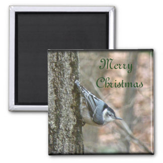 Slate Gray Nuthatch Christmas Songbird Christmas Magnet