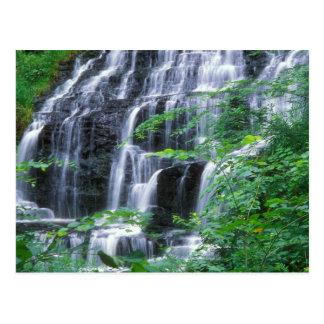 Slatestone Brook Falls Sunderland Postcard