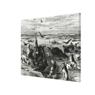 Slaughter of Buffaloes on the Plains Canvas Print