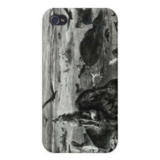 Slaughter of Buffaloes on the Plains Cover For iPhone 4