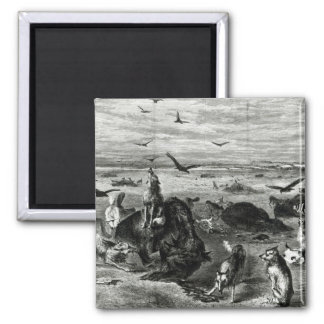 Slaughter of Buffaloes on the Plains Magnet