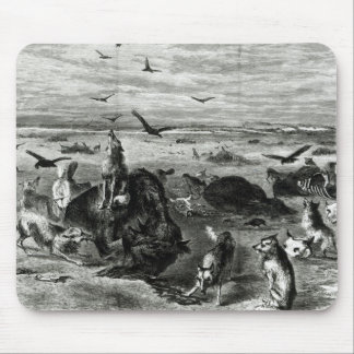 Slaughter of Buffaloes on the Plains Mouse Pad