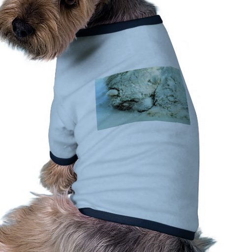 Sled dog in storm doggie t shirt