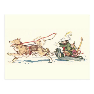 Sled Dog Pulling Sleigh Post Cards