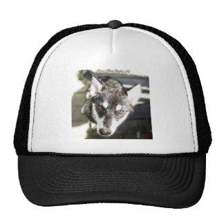 Sled Dog Puppy - Sketch Trucker Hat