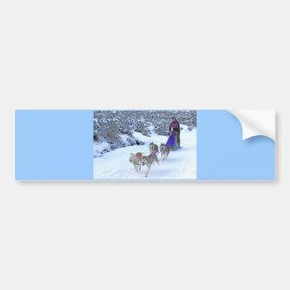 Sled Dog Racing Car Bumper Sticker