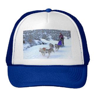 Sled Dog Racing Hat