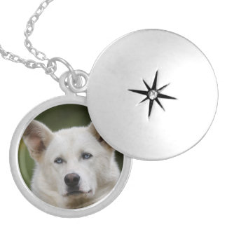 sled dog silver plated necklace