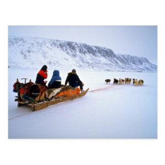 Sled dog tour, South Baffin Island Postcard