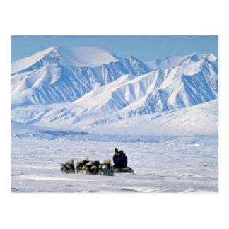Sled dog travel, Baffin Island Postcard