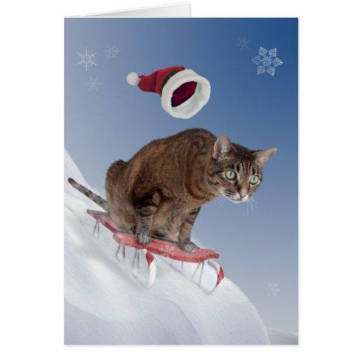 sledding cat christmas card zazzle