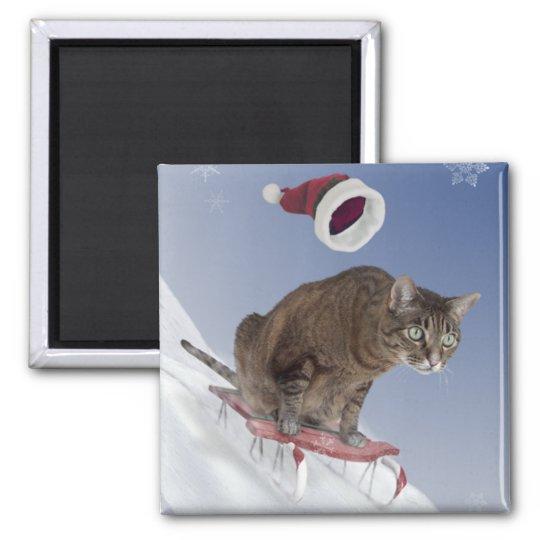 Sledding Cat Magnet