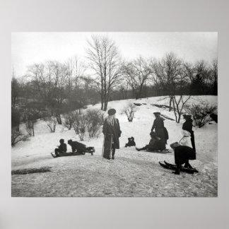 Sledding en Central Park, 1906. Foto del vintage Póster