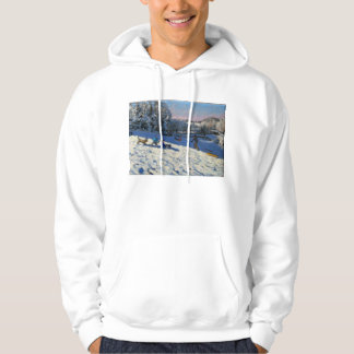 Sledging near Youlgreave Derbyshire Hoodie