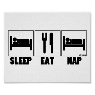 Sleep Eat Nap Poster
