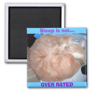 Sleep is not..., OVER RATED 2 Inch Square Magnet
