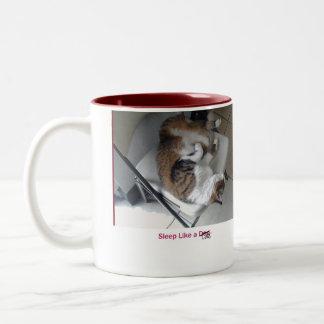 Sleep Like a Cat Coffee Mug