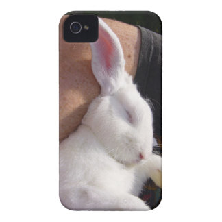 Sleep white Bunny Rabbit Blackberry Bold Covers