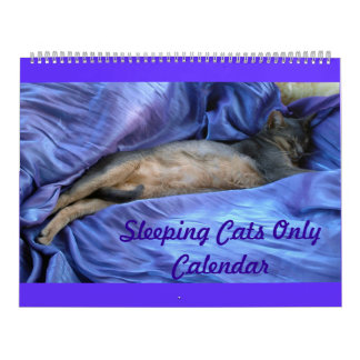 Sleeping Abyssinian Cats Calendar - Extra Large
