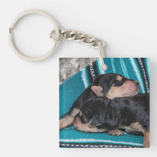 Sleeping Airedale Puppies Keychain