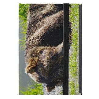 Sleeping Alaskan Grizzly Case For iPad Mini