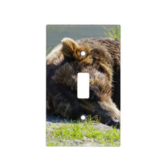 Sleeping Alaskan Grizzly Light Switch Cover