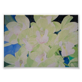sleeping angel orchids poster