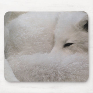 Sleeping Arctic Fox Mouse Pad