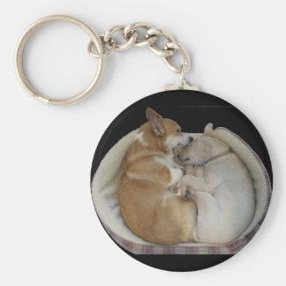sleeping babies keychain