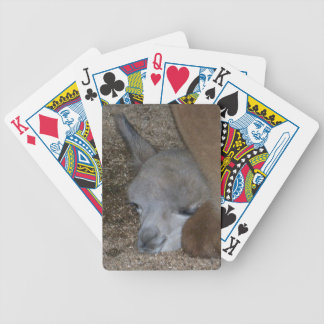 Sleeping Baby Alpaca Playing Cards