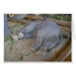 Sleeping Baby Elephant Greeting Card