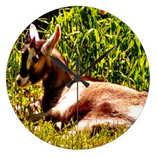 Sleeping Baby Goat Wall Clock