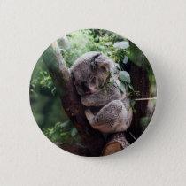 Sleeping Baby Koala Button