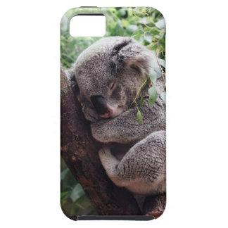 Sleeping Baby Koala iPhone SE/5/5s Case