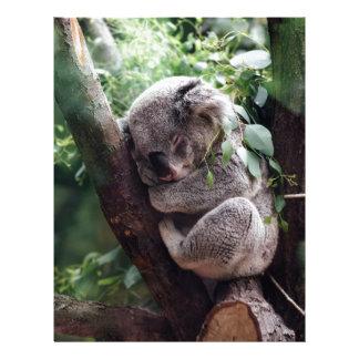 Sleeping Baby Koala Letterhead