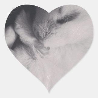 Sleeping baby rabbit photo design. heart sticker