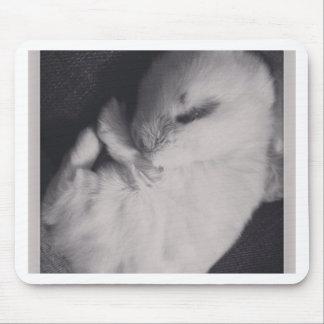 Sleeping baby rabbit photo design mouse mat