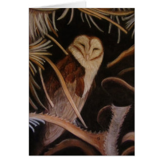 sleeping barn owl pastel animal painting card
