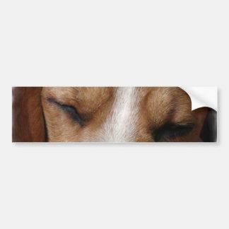 Sleeping Beagle Bumper Sticker