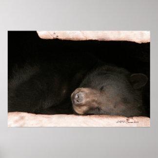 Sleeping Bear 2 Poster