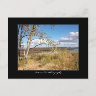 Sleeping Bear Sand Dunes 1 - Postcard postcard